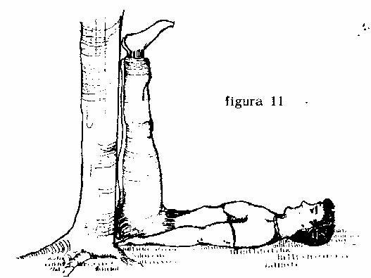 Ejercicio 10 de lamasería