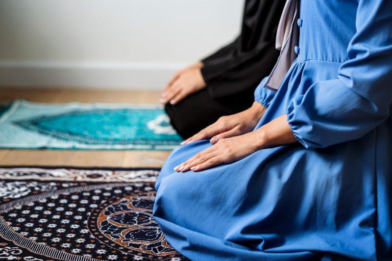 Nueva práctica de meditación para el verano (III)